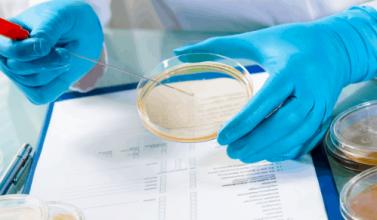 procesos de limpieza y desinfección