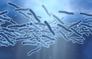 Certificado Profesionalidad Legionella