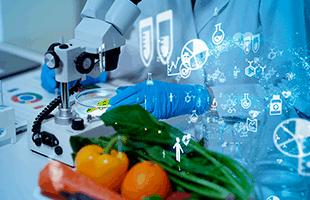 Curso Ley de Seguridad Alimentaria y Nutrición