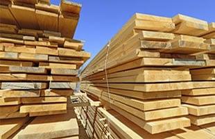Biocidas madera aplicador
