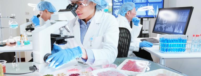 cultura seguridad alimentaria