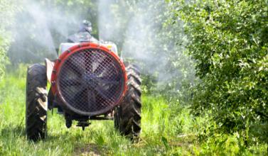 normativa fitosanitarios